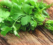 Top 3 công thức trị nám bằng rau mùi, không phải ai cũng biết